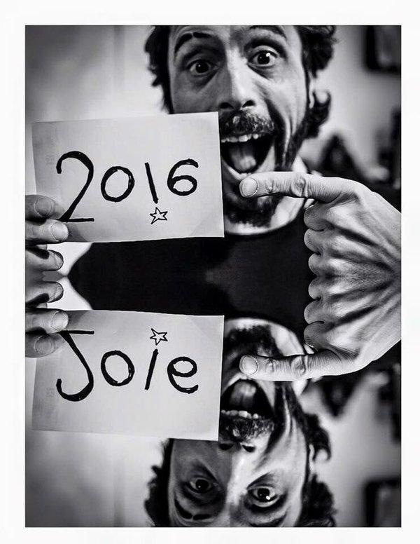 2016-David-Hermans-Joie